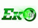Логотип телеканала ЭКО-ТВ